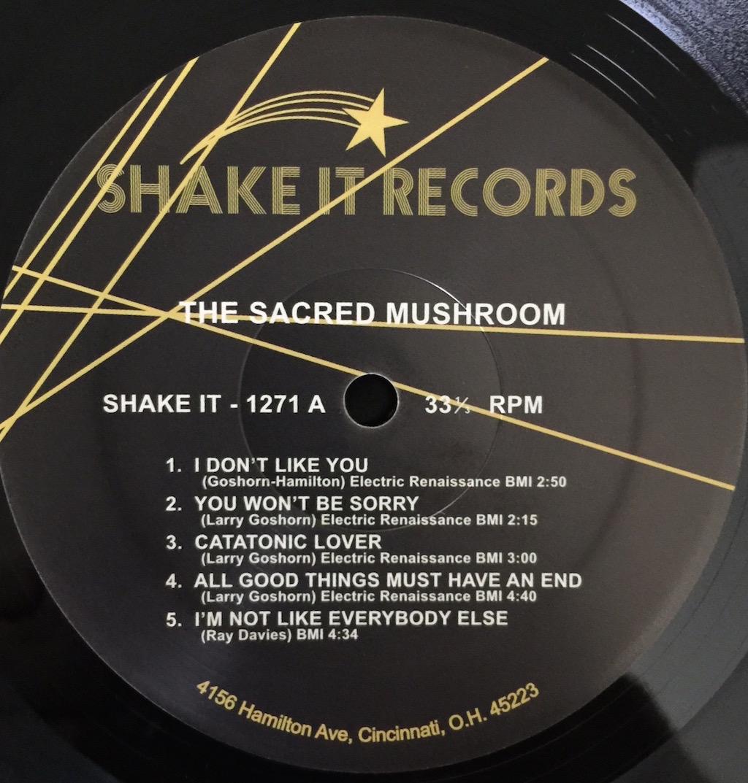 Img 0189 The Vinyl Press
