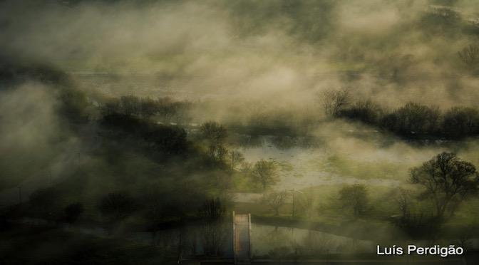 The War of Fog